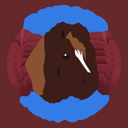 Dayboro Pony Club